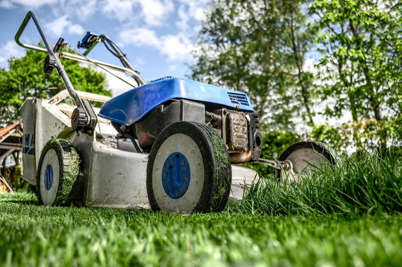 Gardening & Maintenance